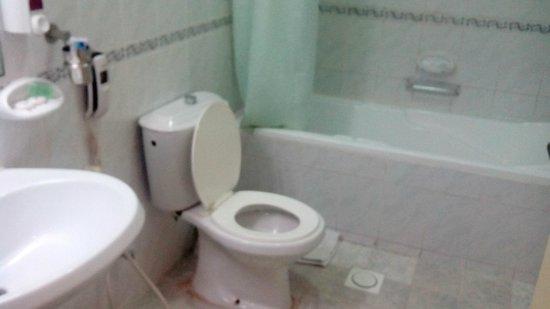فندق بانوراما بور دبي: Ванная комната