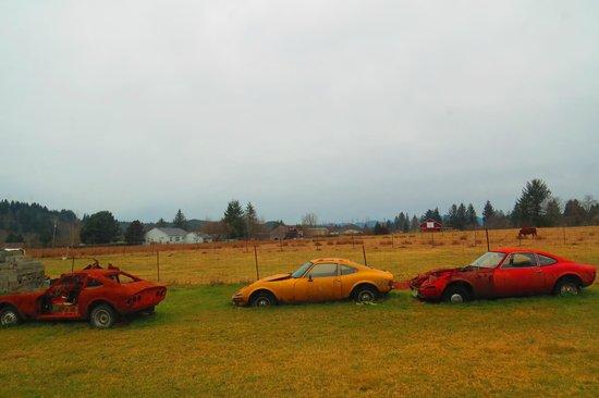 Munson Creek Falls: On the Road In , Someones Dream Cars Rusting Away