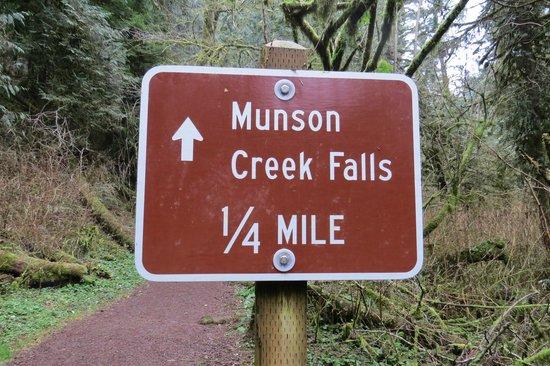 Munson Creek Falls: Short Walk from Car Park