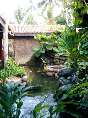 Eden Resort & Spa: спа центр на территории