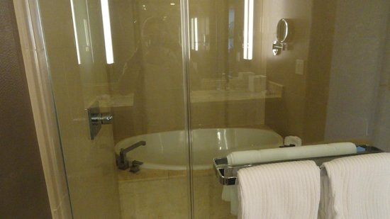 ARIA Resort & Casino: Bathroom and Shower