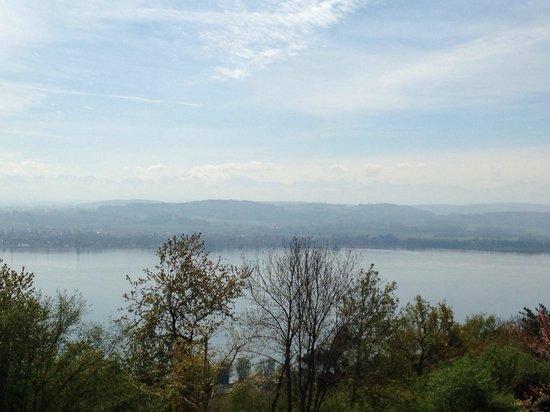 Hotel-Restaurant Mont-Vully: Die Aussicht