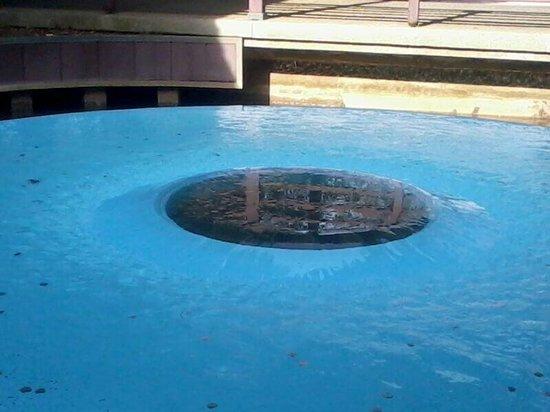 Longwood Gardens : Eye of water