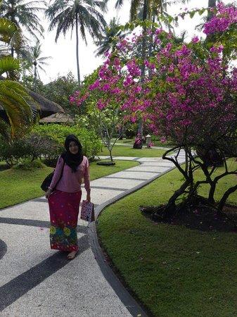 Kila Senggigi Beach Lombok: taman yg bersih