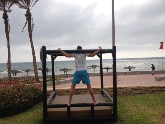 Hotel Riu Tikida Beach: Private sun beds with sea view