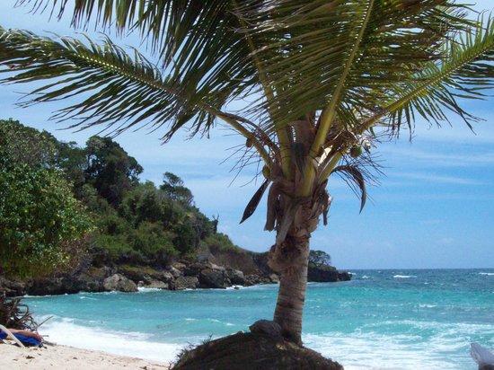 Luxury Bahia Principe Cayo Levantado : Ile de rêves