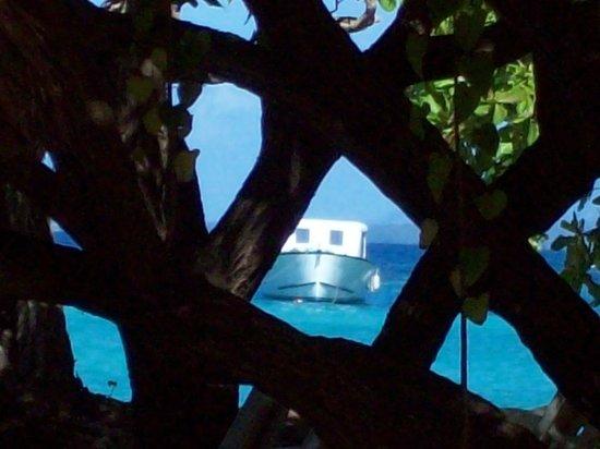 Luxury Bahia Principe Cayo Levantado Don Pablo Collection : Petit clin d'oeil de la beauté des lieux