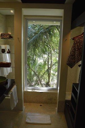 Banyan Tree Seychelles: Vista desde ducha