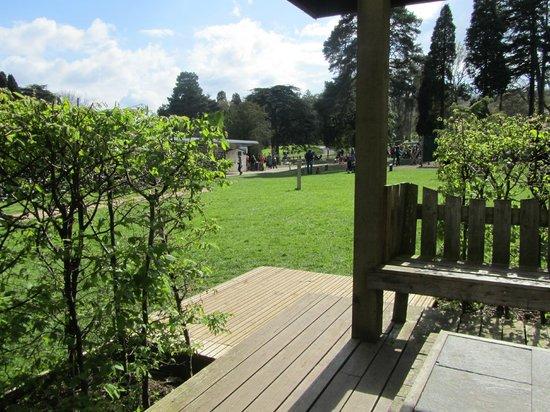 Trentham Gardens: lovely