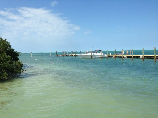 Hilton Key Largo Resort: Pier