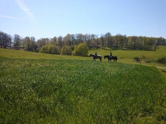 Le Clos des Chenaies : Balade a cheval avec Kami et Paso