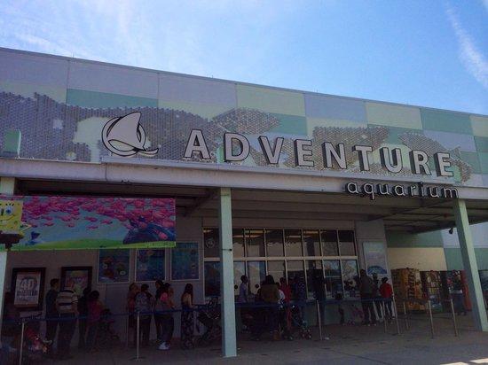 Entrance Picture Of Adventure Aquarium Camden Tripadvisor