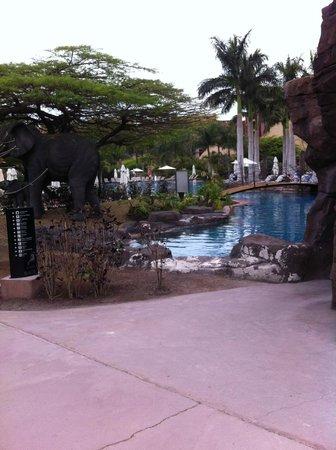 Lopesan Baobab Resort : By the pool