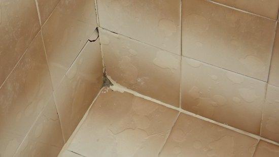 Miami Sun Hotel: shower walls