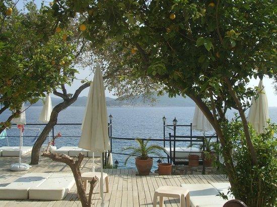 Hotel Kale: Leymona-Beach