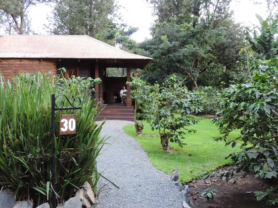 Arusha Coffee Lodge : Our lodge number 30