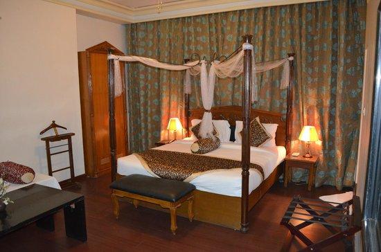 Hotel The Nagpur Ashok : Room