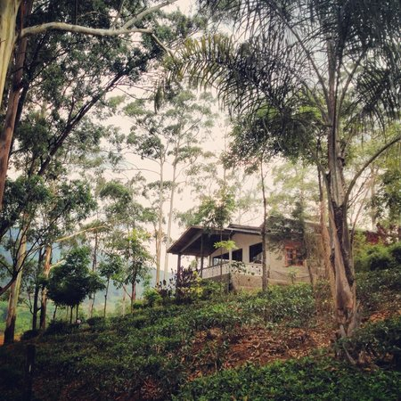 The Farm Resorts: Cottage 2