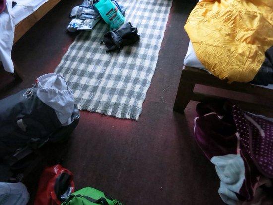 Gurkha Inn Village Hotel: Room carpet