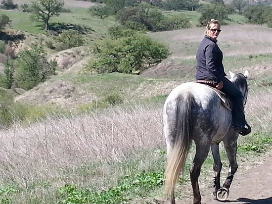 Ride On Picture Of Ocean Park Ranch Santa Monica Tripadvisor