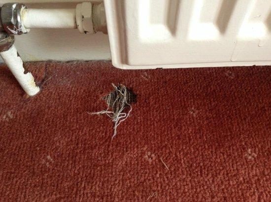 BEST WESTERN Grasmere Red Lion Hotel: The dirt and the holes in carpet Red Lion Hotel Grasmere2014