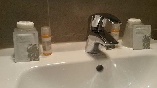Hotel Gabriel Paris-Issy: Basic stuff provided
