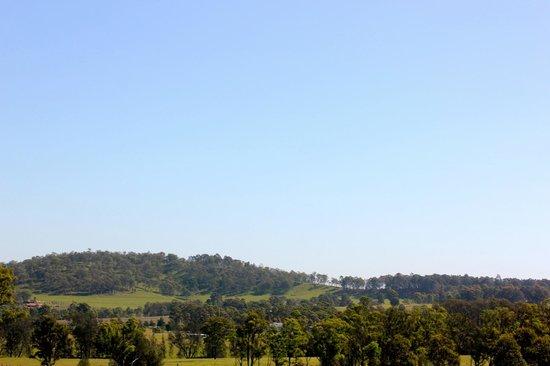 Bluebush Estate - The view