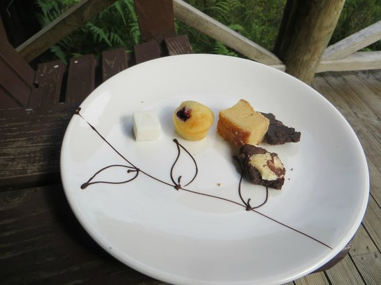 Peppers Cradle Mountain Lodge: petit fours sent 2 nights as pre dinner canapes
