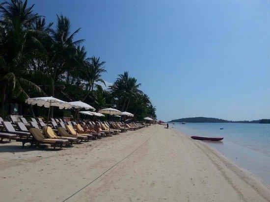 Chaweng Regent Beach Resort: Chaweng beach