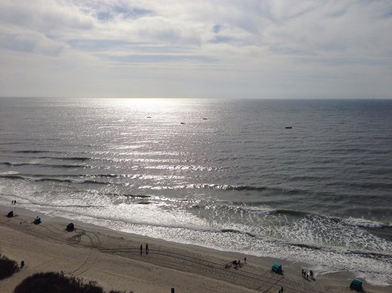 Sea Crest Oceanfront Resort : Awesome view.