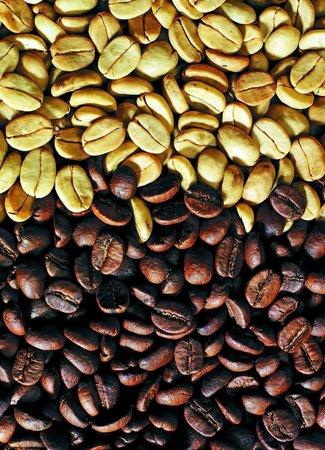 Doka Estate Coffee Tour: GEPELDE BONEN