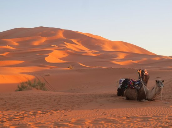 Morocco Discovery Holidays: sunset at Sahara