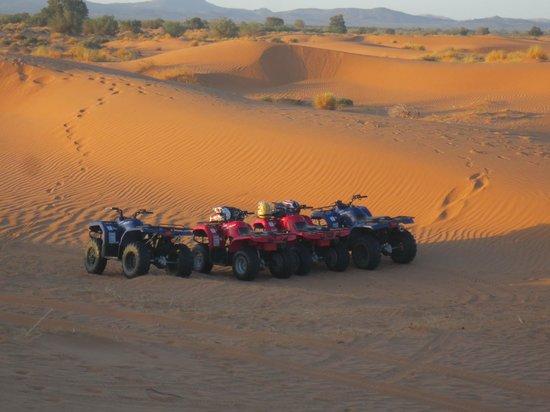 Morocco Discovery Holidays: our Quads....