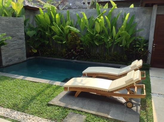 Ubud Padi Villas: Villa for the first day