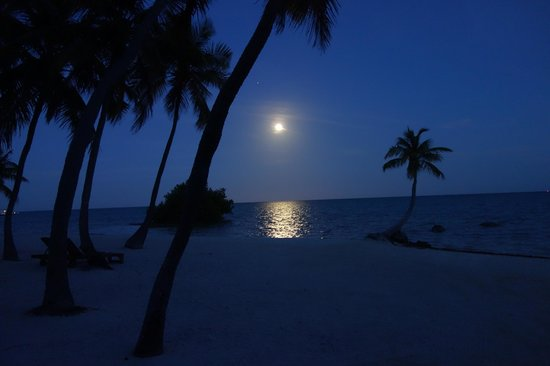 The Moorings Village and Spa: The beach at night