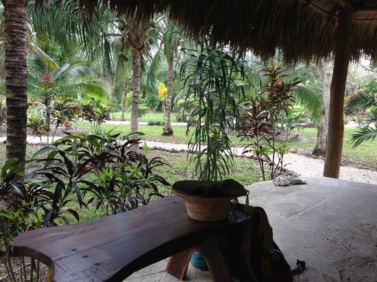 Villas Ecotucan : The porch of our junior cabana
