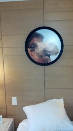21c Museum Hotel Cincinnati : more room art