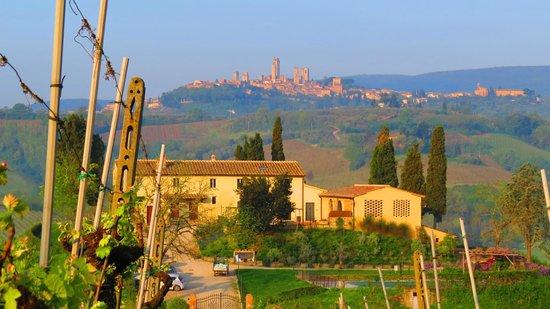 Agriturismo La Lucciolaia: Agristurismo La Lucciolaia with San Gimignano as a backdrop