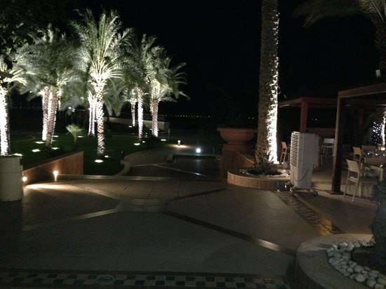 Al Raha Beach Hotel : Palm trees within grounds decorated at night