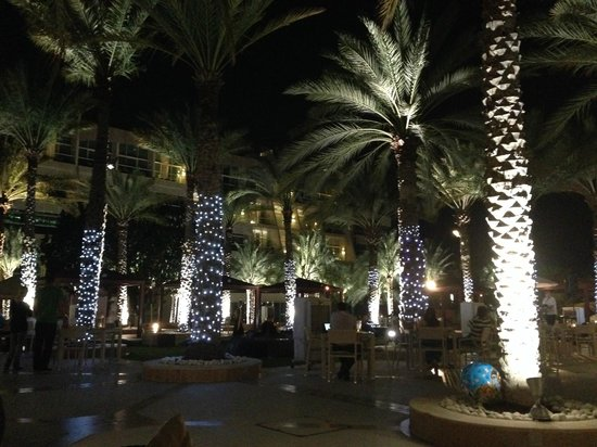 Al Raha Beach Hotel: Palm trees within grounds decorated at night