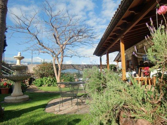 Finca Casa-Vieja : great landscaped garden, breakfast area