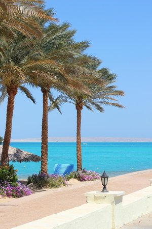 Hilton Hurghada Resort: Голубая лагуна