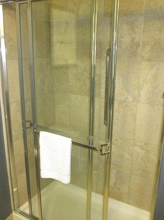 Hampton Inn Manhattan/Times Square South : Shower