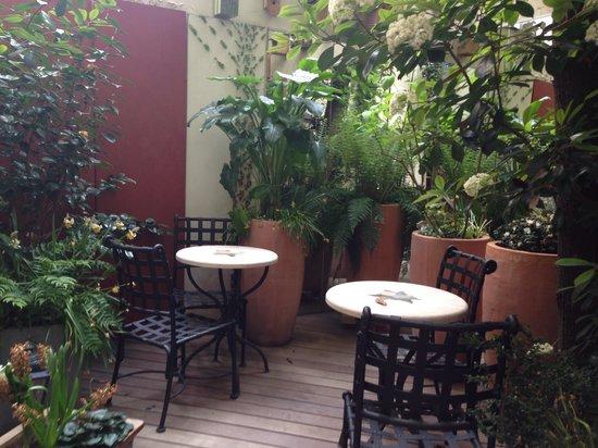 Hotel D'albion: Jardin