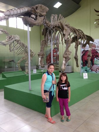 Museo Paleontologia (Zacapa) - 2019 All You Need to Know