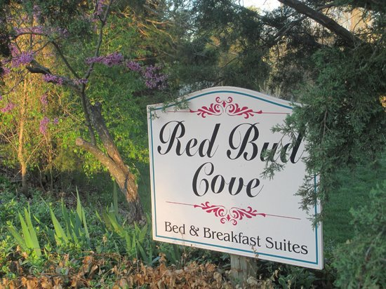 Red Bud Cove Bed and Breakfast Suites: spring time