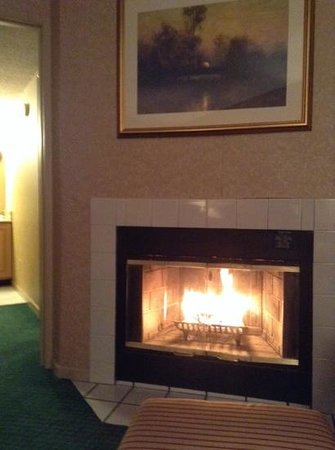 Homewood Suites by Hilton Columbus / Worthington: fireplace in our sitting room