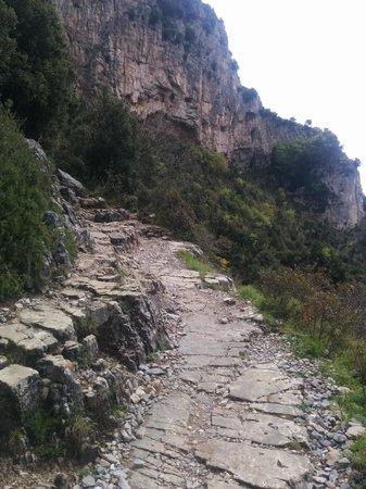 Sentiero degli dei (Path of the Gods) : Path trail - not super narrow as people think