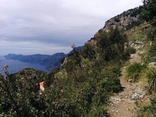 Sentiero degli dei (Path of the Gods) : Trails in the path