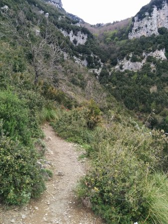 Sentiero degli dei (Path of the Gods) : Path width - not as scary as described!